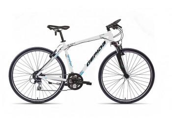 Bicicleta Gepida Alboin 300 PRO CRS 2013