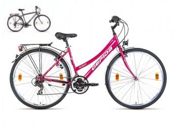 Bicicleta Gepida Alboin 100 2014